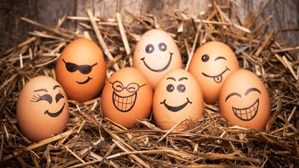brown-eggs-with-faces-drawn-on-them